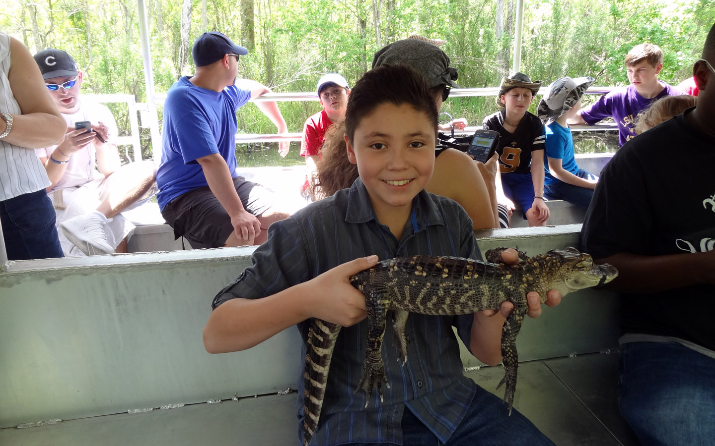 New Orleans Alligator Swamp Tour