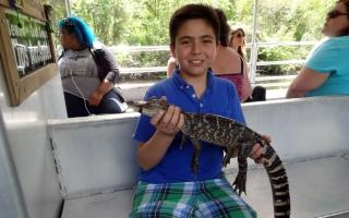 New Orleans Alligator Swamp Tour
