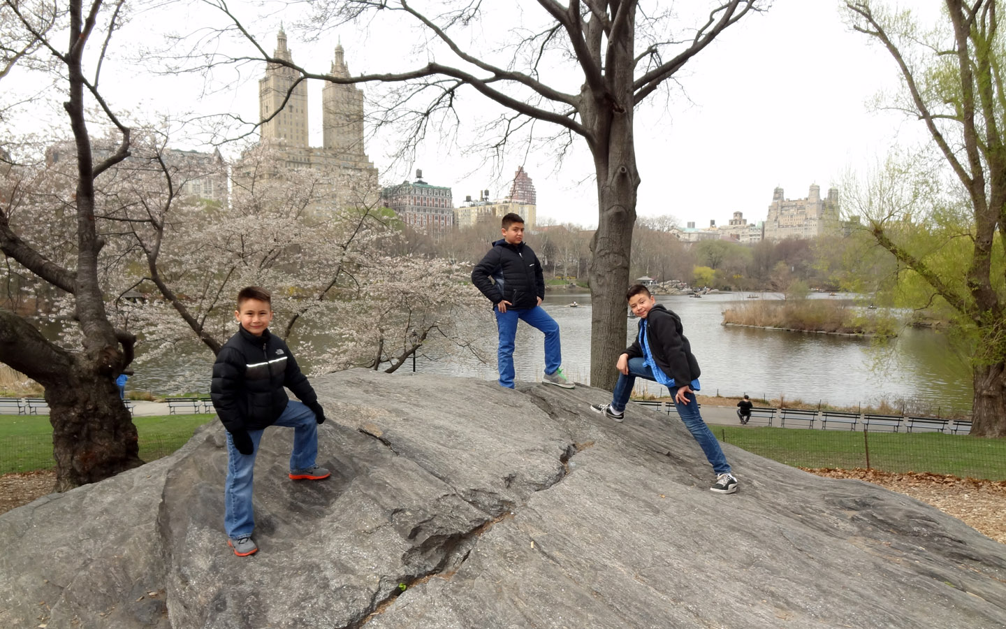 Central Park, New York, USA 2014