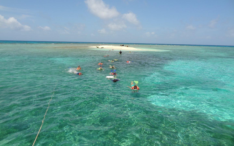 2014 Belize Snorkeling